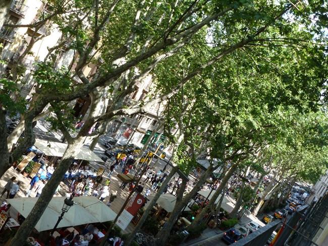 Barcelona aus Sicht erfolgreicher Österreicher