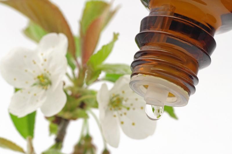 Als größter Vorteil der Bachblüten gilt, dass sie keinerlei Nebenwirkungen haben, keine allergischen Reaktionen hervorrufen können, auch für Schwangere oder Babys geeignet sind und mit allen alternativen oder schulmedizinischen Behandlungen kombiniert werden können (Foto Schlierner/Fotolia.com)