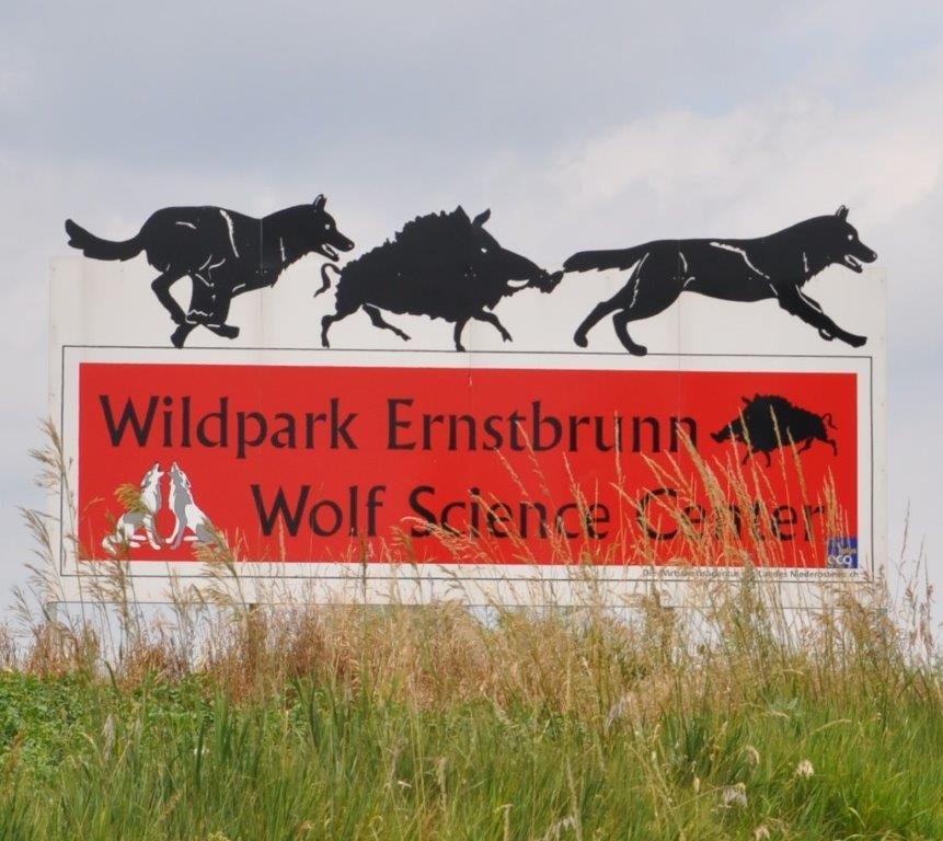 Wolf Science Center Ernstbrunn