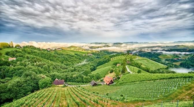 Blick von der Ried Hochsteinriegl – Weingut Wohlmuth