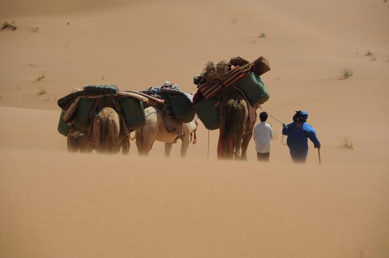 Wenn Nomaden einkaufen gehen, bedeutet das, das Dromedar zu satteln, meist 5 Tage ins nächste Dorf oder in die nächste Stadt zu gehen, einen Tag lang einzukaufen wie z.B. 50 Kilo Kartoffel, Karotten, Zucker, Mehl usw., und dann wieder zurück zu marschieren. Dann verschwinden sie wieder für 2 – 3 Monate in der Wüste (Foto Joe Haider)