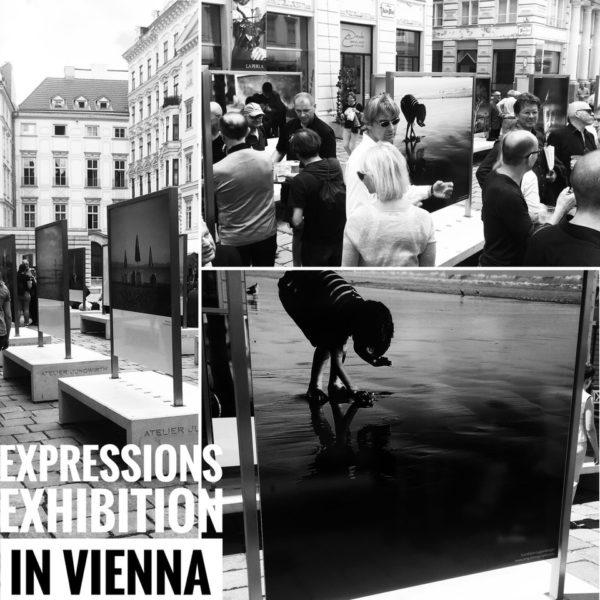 Die Fotos von Eva Maria Guggenberger waren 2017 in einigen Ausstellungen zu sehen (Foto privat)