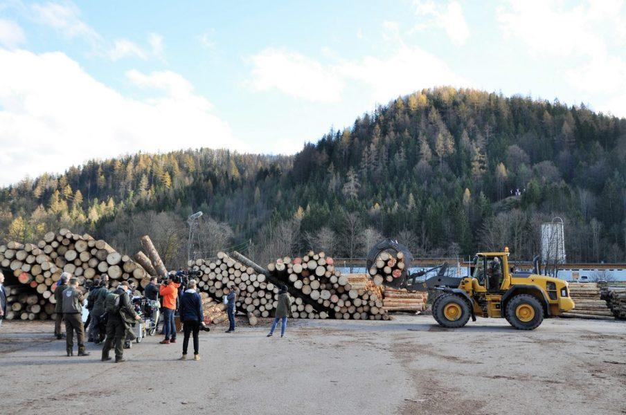 """Dreharbeiten zu """"Steiererkreuz"""" im Sägewerk Thoma in Gußwerk (Foto Reinhard A. Sudy)"""