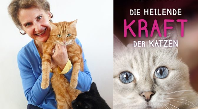 Die heilende Kraft der Katzen
