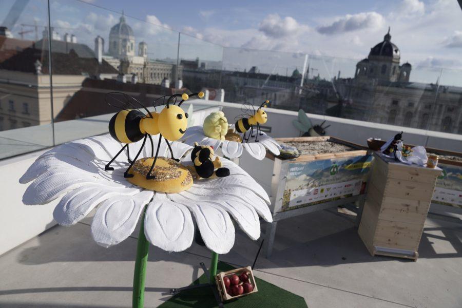 """Unter dem Motto """"Give Bees a Chance"""" wurde am 7. April das grenzüberschreitende Gesellschaftsprojekt """"BioBienenApfel"""" präsentiert, das neuen Lebensraum für Bienen schaffen soll und bei dem jede Österreicherin und jeder Österreicher mitmachen kann. (Foto Philipp Platzer)"""